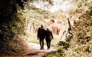 Property wealth amongst over-65s rises